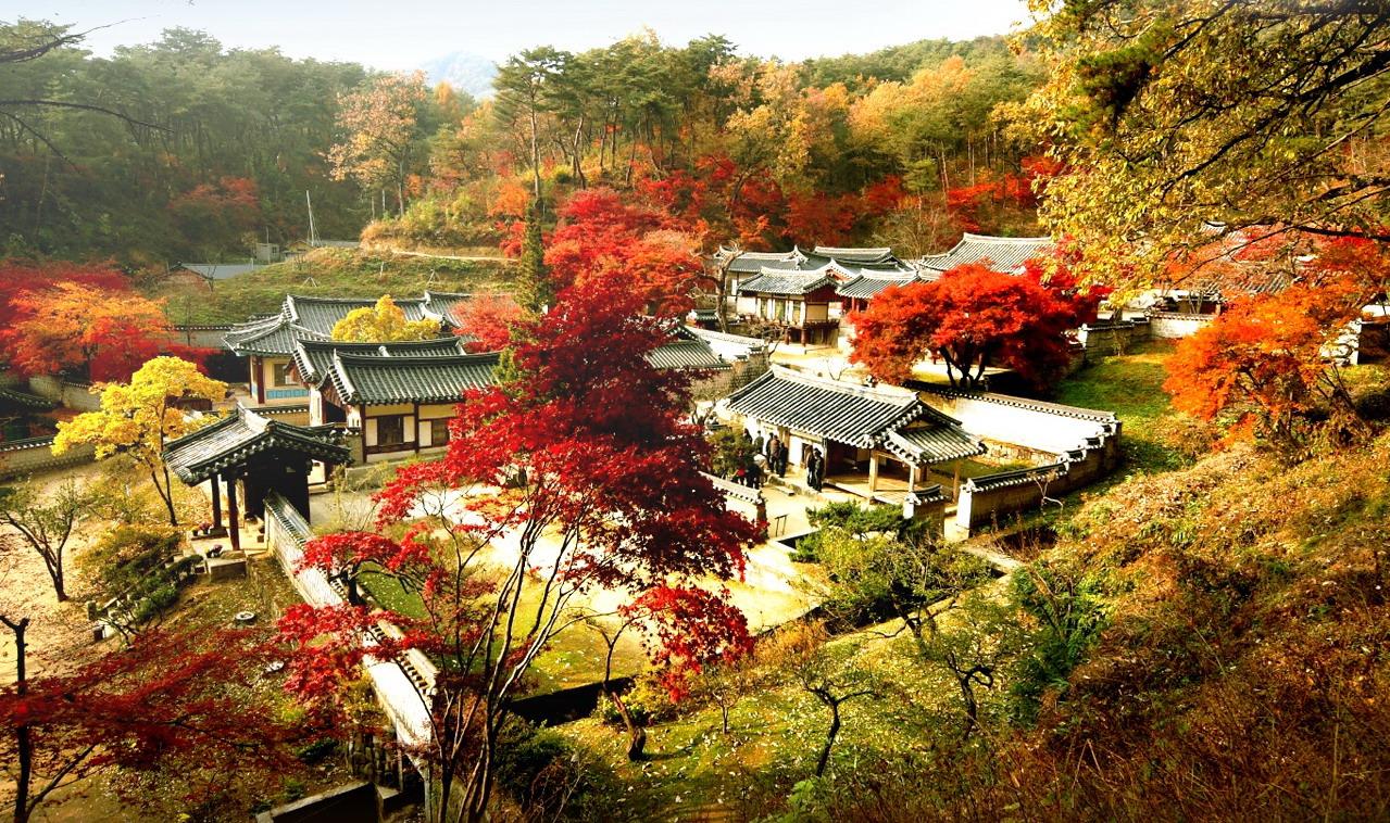 Tour du lịch Hàn Quốc 5 ngày 4 đêm
