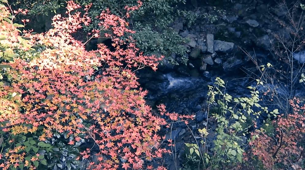 Công viên MinooOsaka Nhật Bản