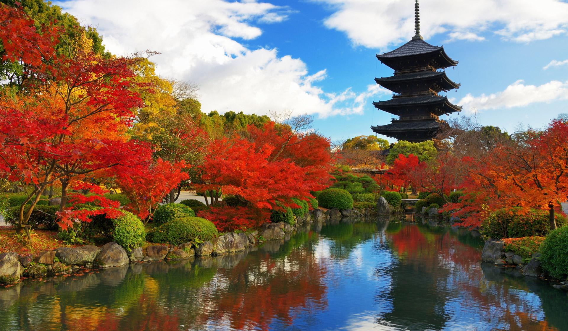 Du lịch Nhật Bản: osaka - kyoto - nagoya - kobe 5 ngày