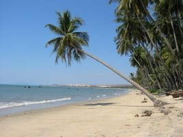 """Resort ở Mũi Né : """"Con cá ngựa"""" bên bờ biển xanh"""