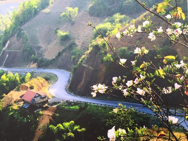 Du lịch Điện Biên mùa hoa ban