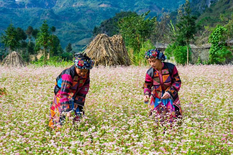 Kết quả hình ảnh cho Du lịch Hà Giang vào mùa lễ hội tháng 1 – 2