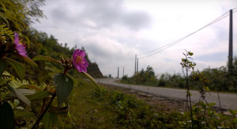 7 kinh nghiệm cần lưu ý khi du lịch Hà Giang