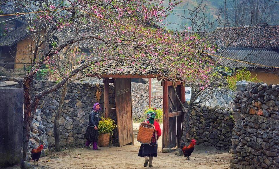 7 trải nghiệm đáng nhớ khi du lịch Hà Giang