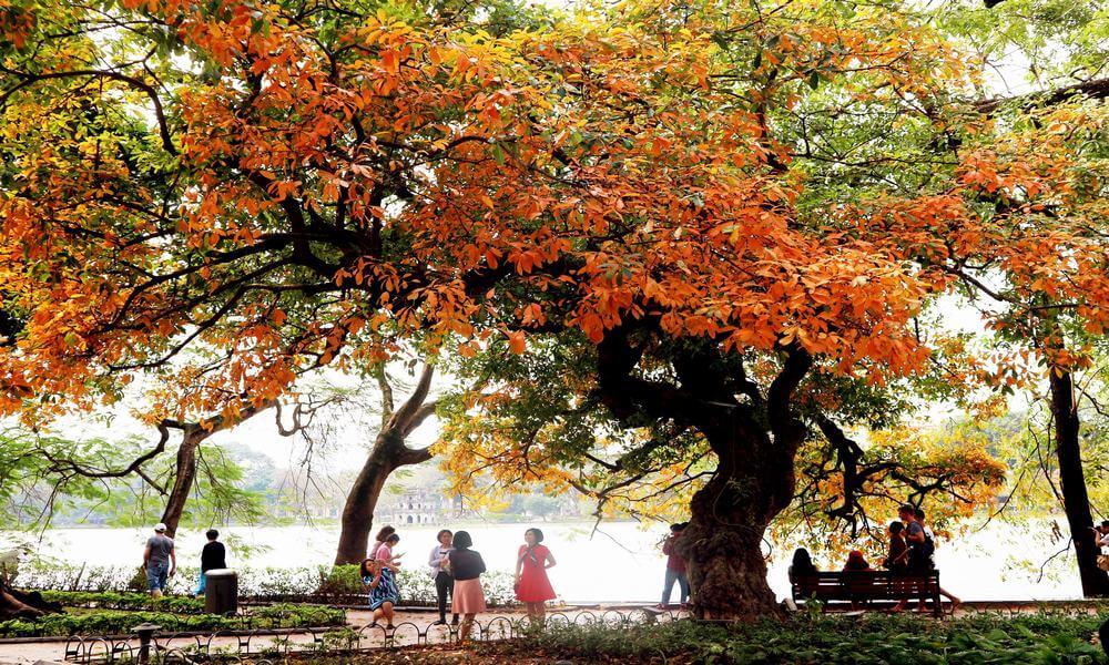 Mùa thu quyến rũ ở Hà Nội