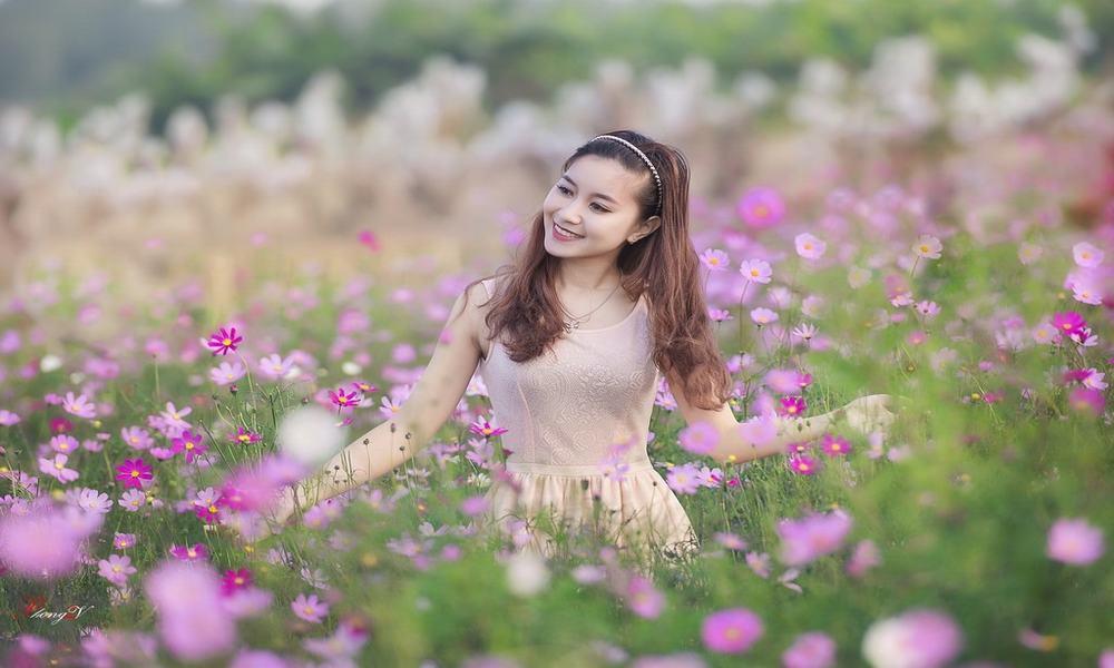 Thung lũng hoa hồ Tây - Điểm tham quan chụp ảnh hấp dẫn ở Hà Nội