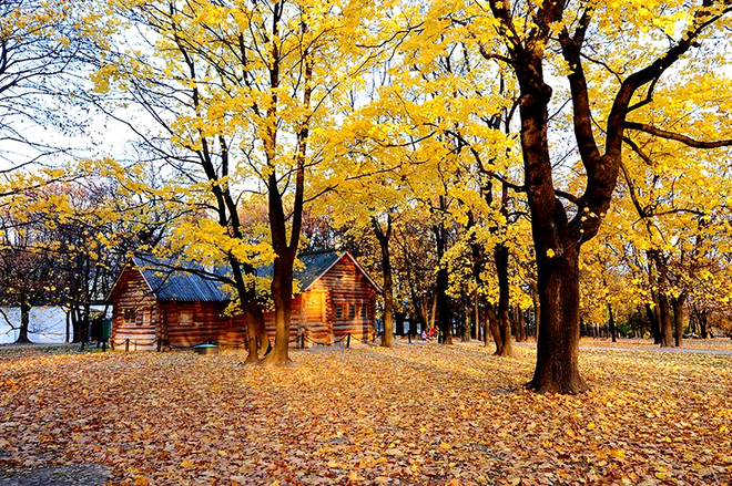 Nước Nga với mùa thu đẹp nhất thế giới