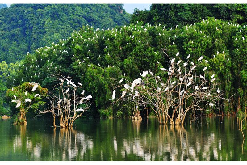 Khám phá Khu du lịch sinh thái Thung Nham - Ninh Bình
