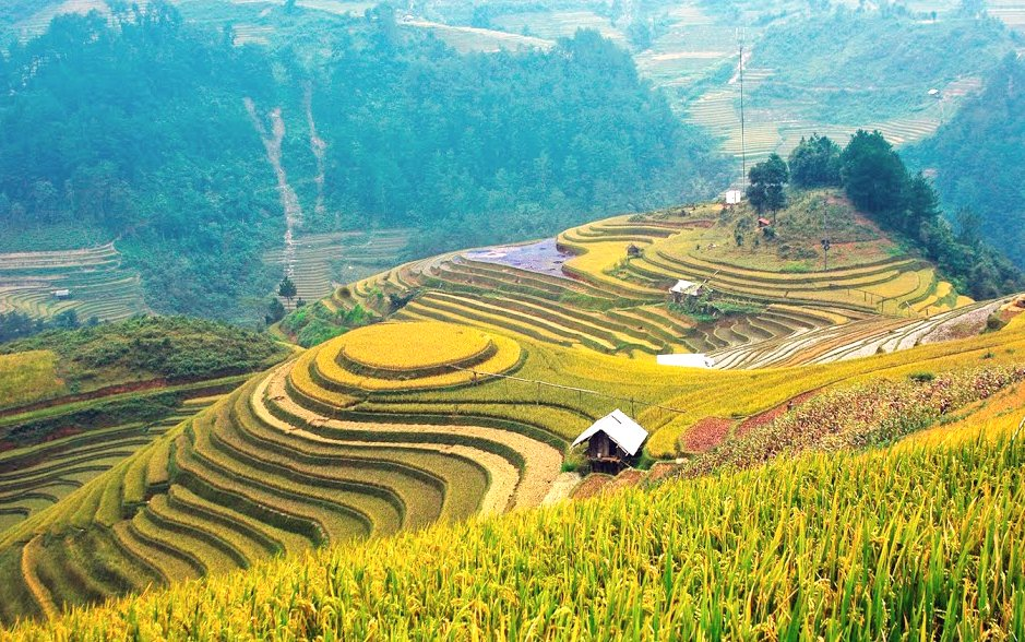 Du lịch Mù Cang Chải - Yên Bái