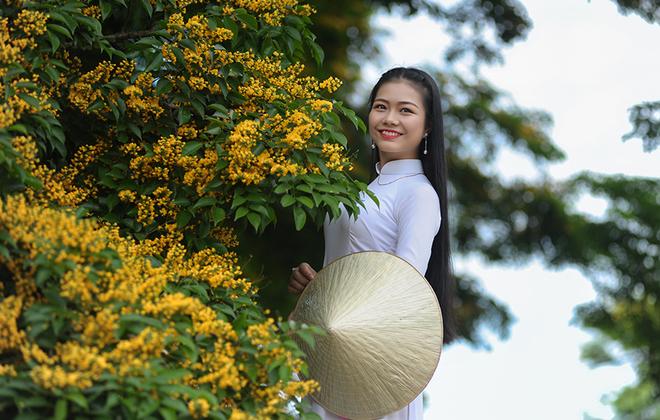 Ngắm những mùa hoa Đà Nẵng